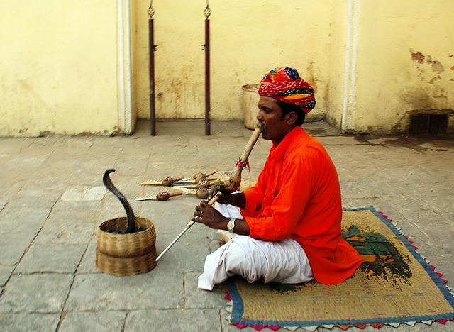 indický muž s hadem