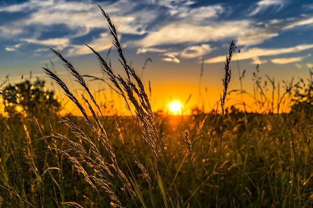 západ slunce za polem
